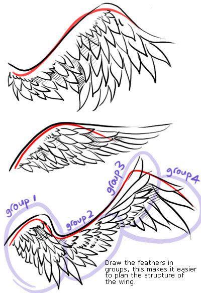 Mes creations - Aile de dragon dessin ...