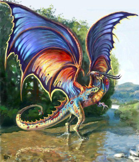 Dragon inconu